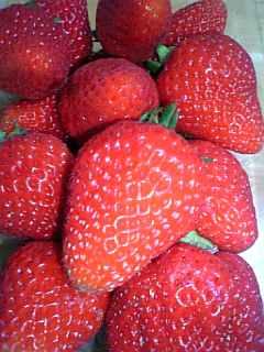 あま〜〜い♪イチゴ
