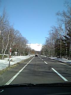白樺街道だよ